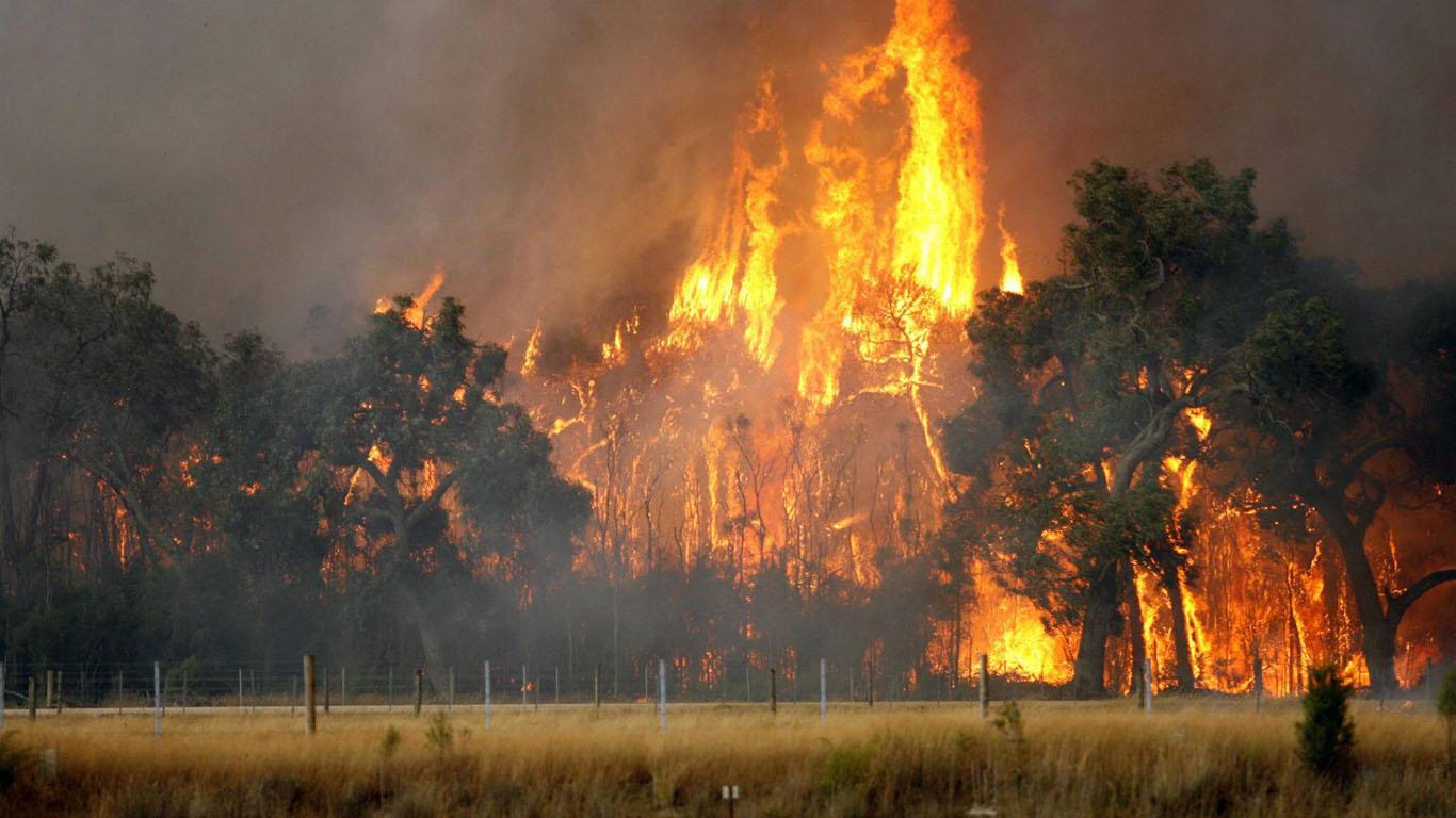 Februar 2009: Verheerende Buschfeuer in Australien