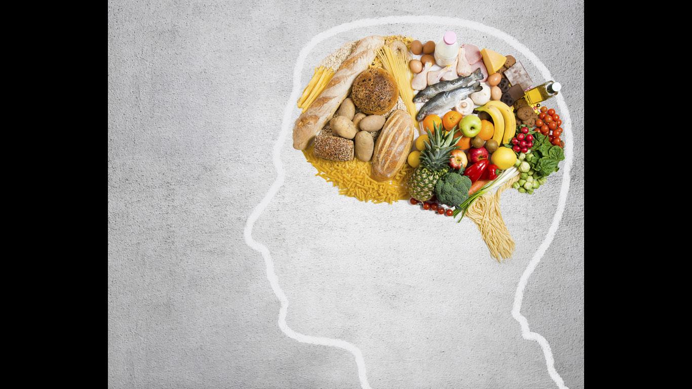 #10 Wie ist es zu erklären, dass bei einer Schlankheitskur alle inneren Organe abnehmen – nur das Gehirn nicht?