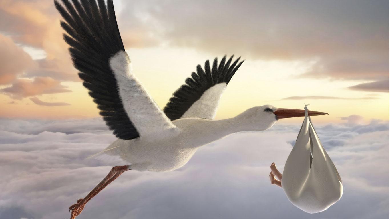 Woher kommt die Idee dass der Storch die Kinder bringt  Welt