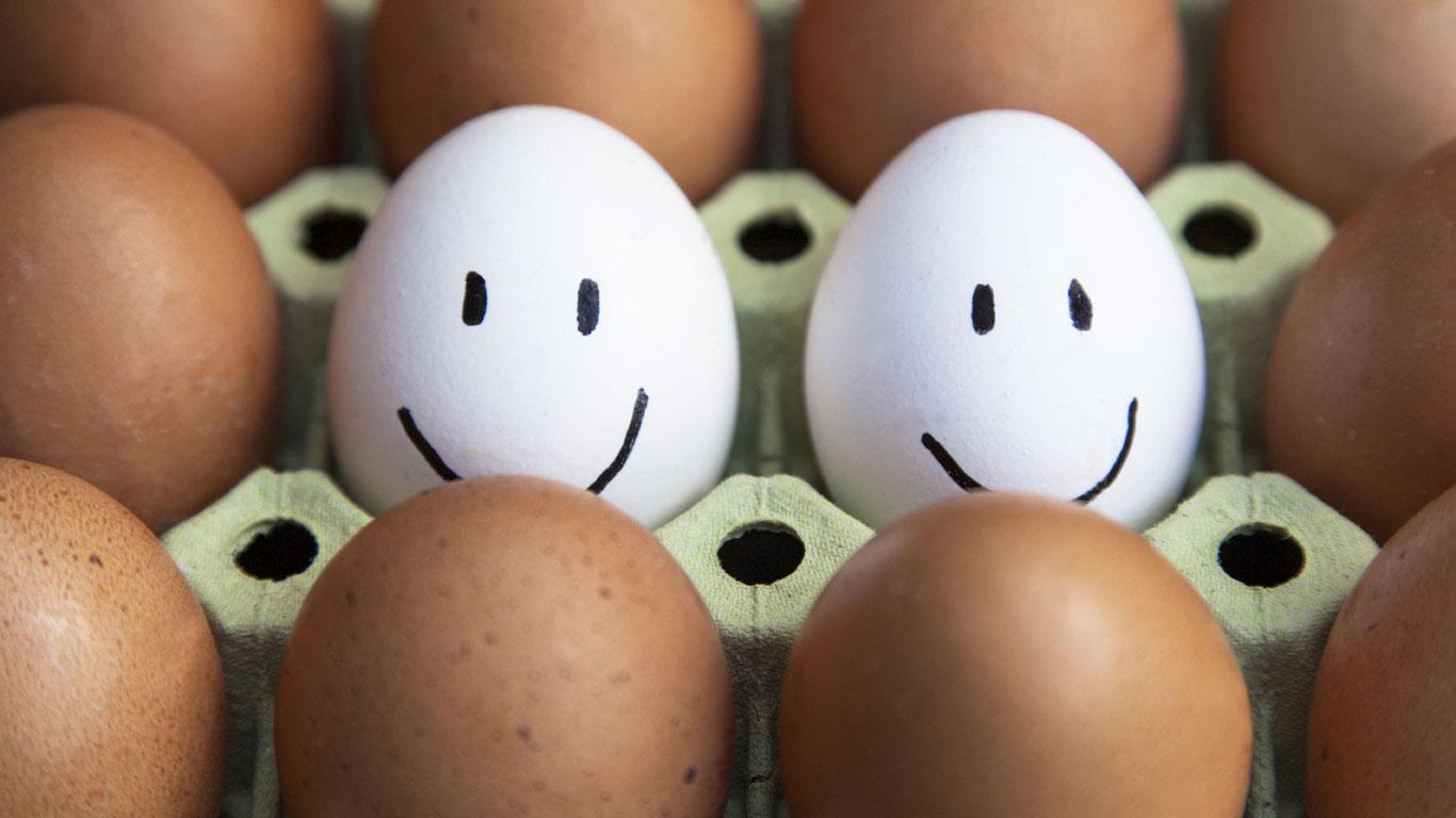 Wieso sind Eier mal braun und mal weiß?