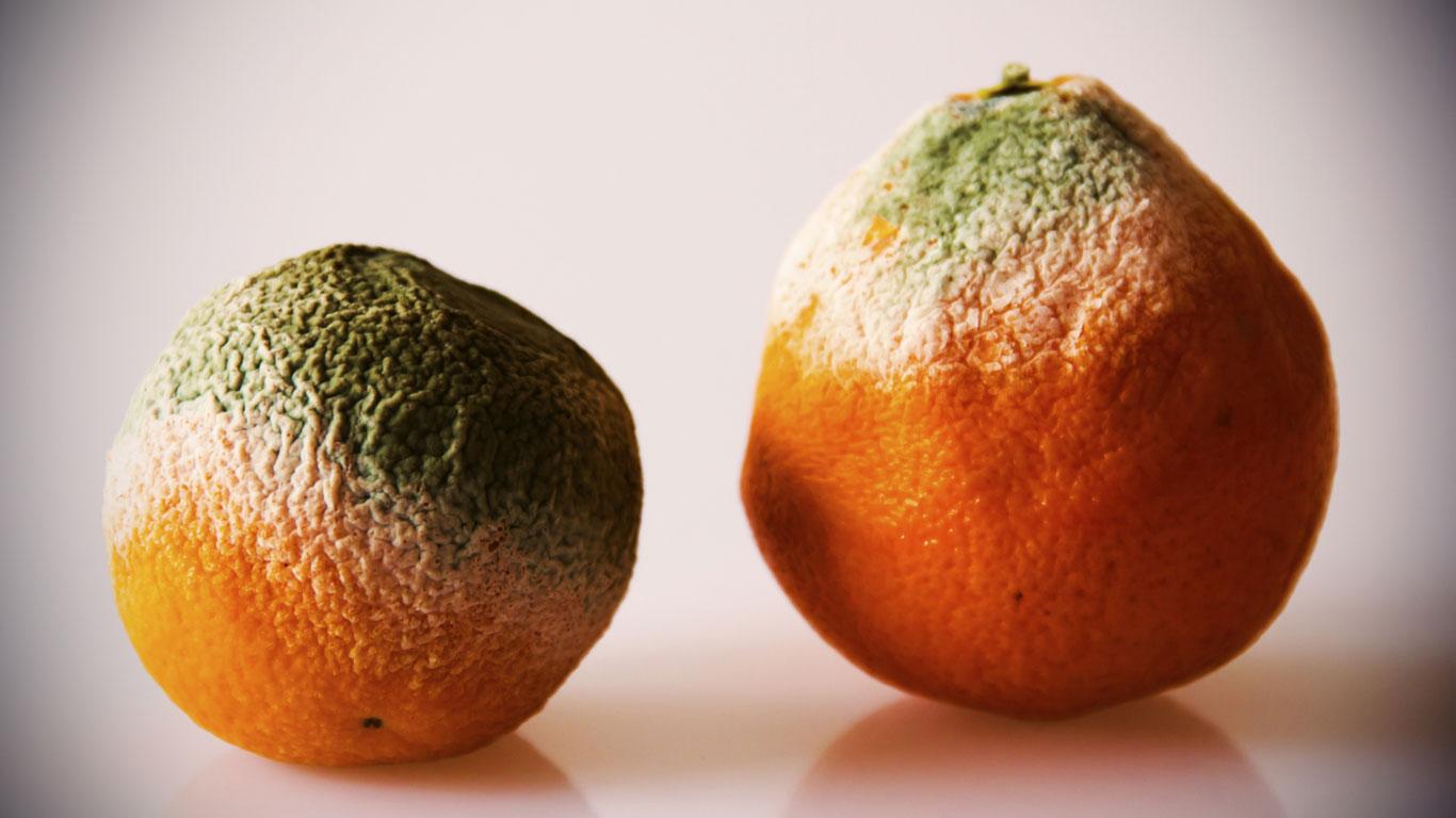 Die größten Lügen der Ernährungsforschung