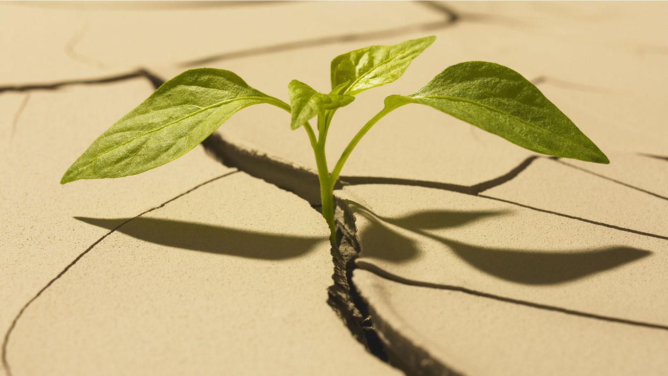 Was ist eigentlich Nachhaltigkeit?