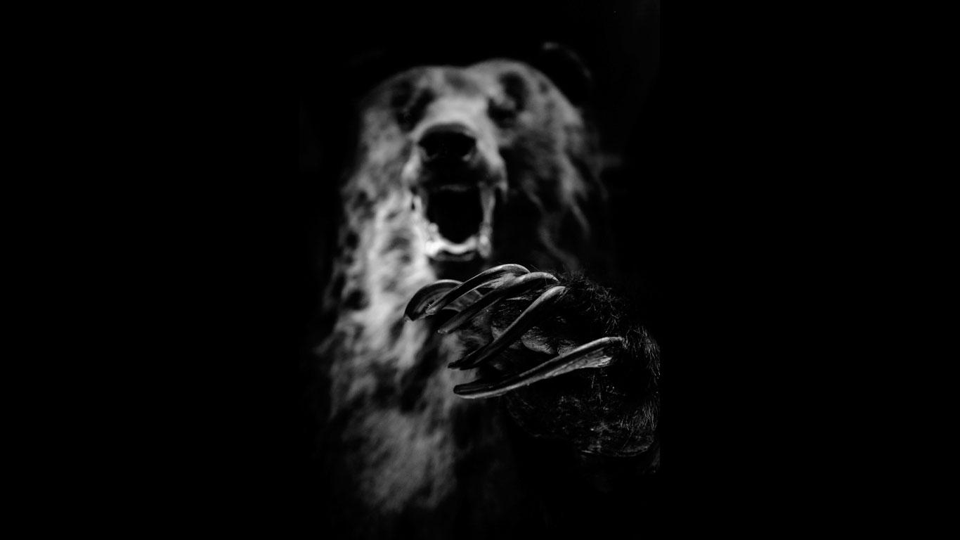 Der Nandi-Bär