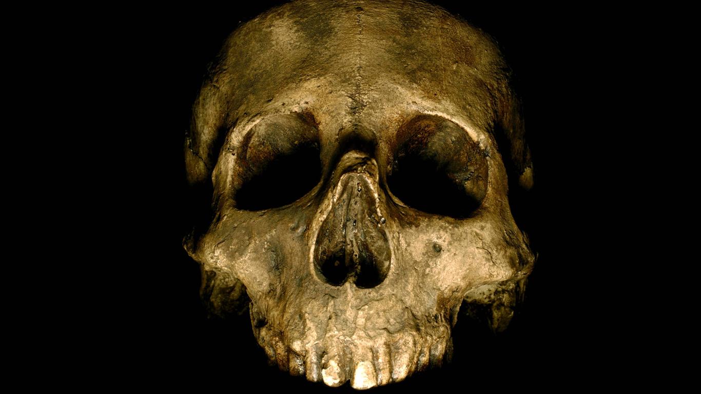 Oliver Cromwells Schädel