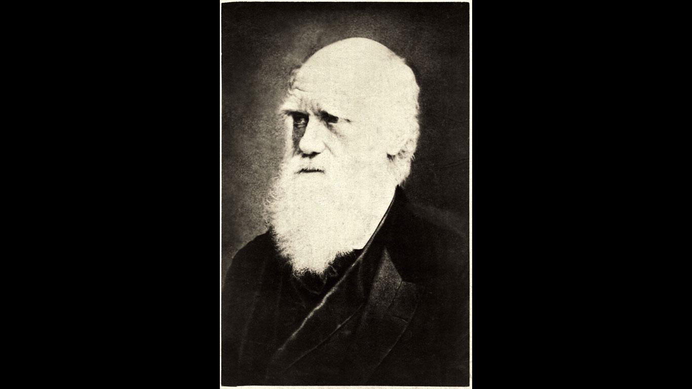 Charles Darwin hat die Evolutionstheorie erfunden