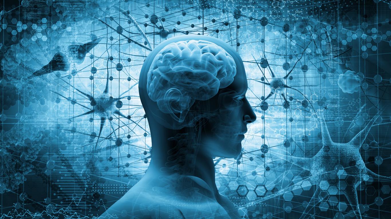Wie das Gehirn die Motivation beeinflusst