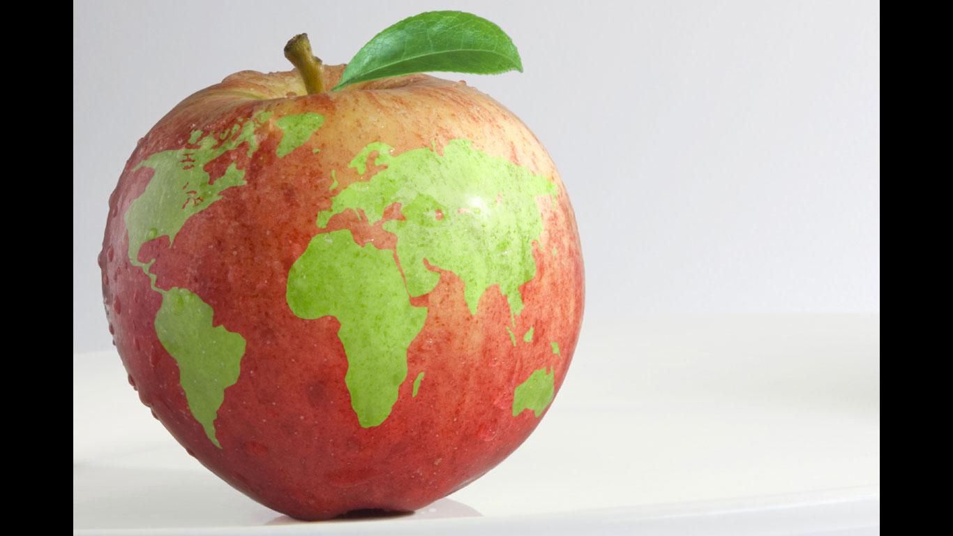 Privat Armee: Wer zieht für Food-Konzerne in die Schlacht?