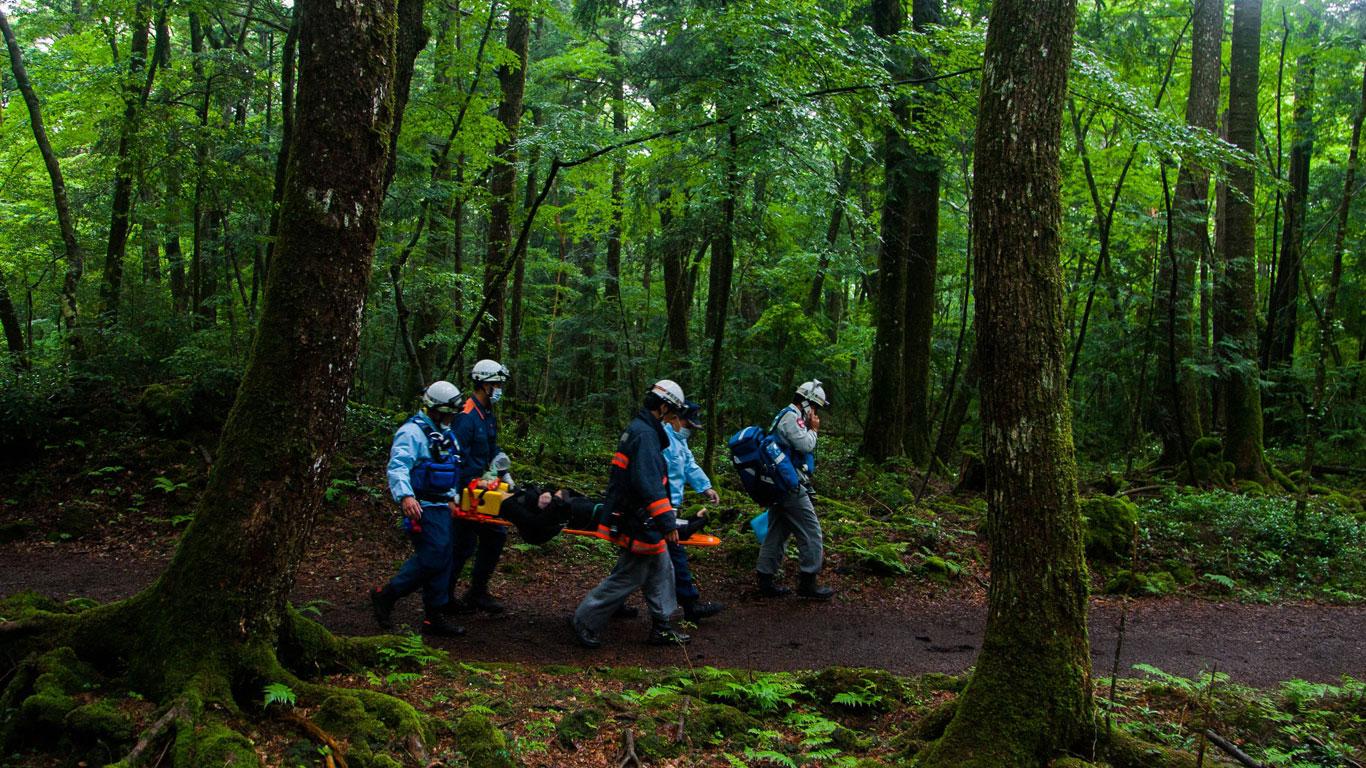 Der Wald der Todessehnsucht
