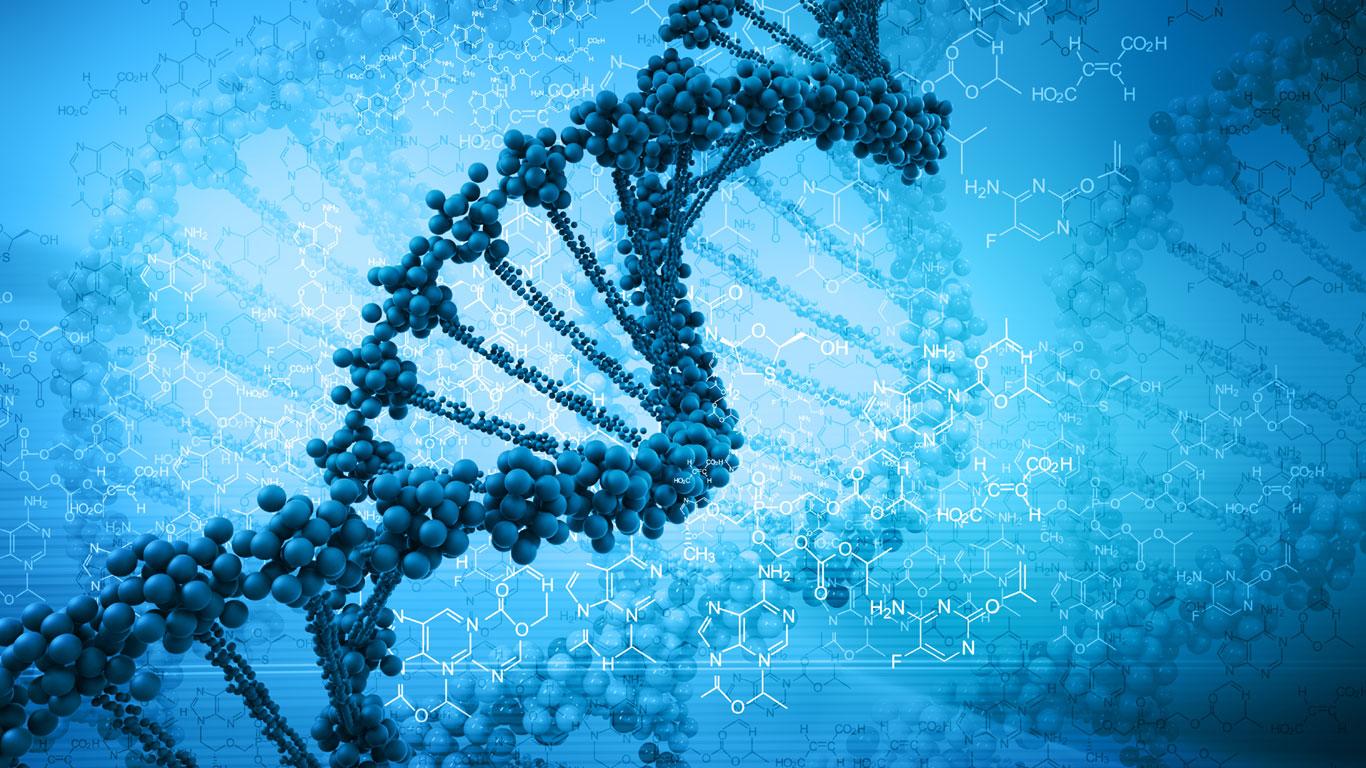 … die DNA aus jeder menschlichen Zelle entfernt werden würde?