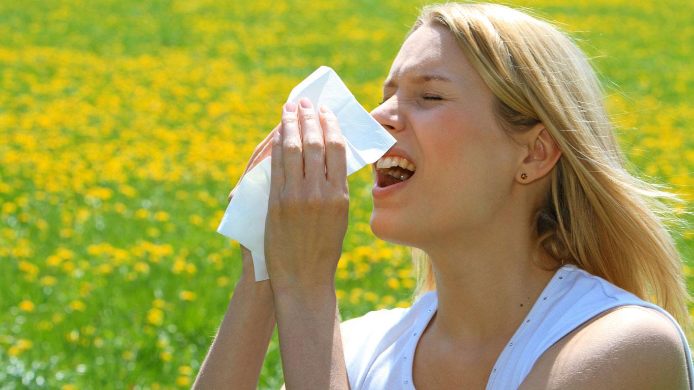 Der Frühling der Allergiker