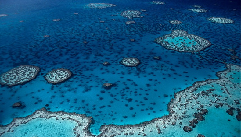 Naturwunder Great Barrier Reef