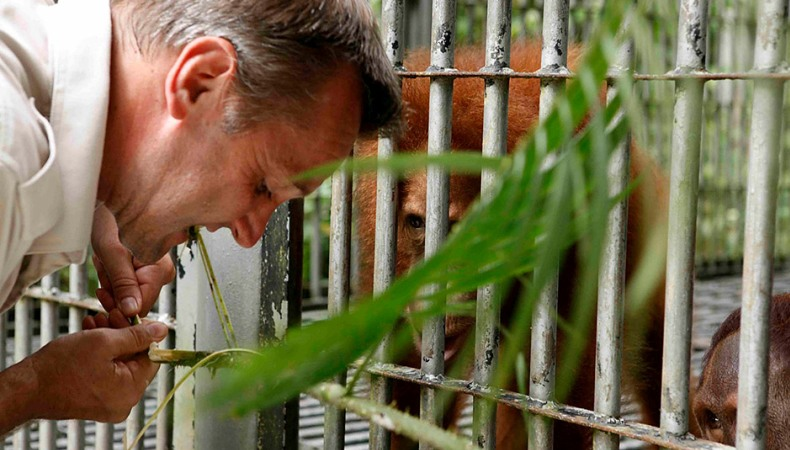 Dschungelschule der Hoffnung