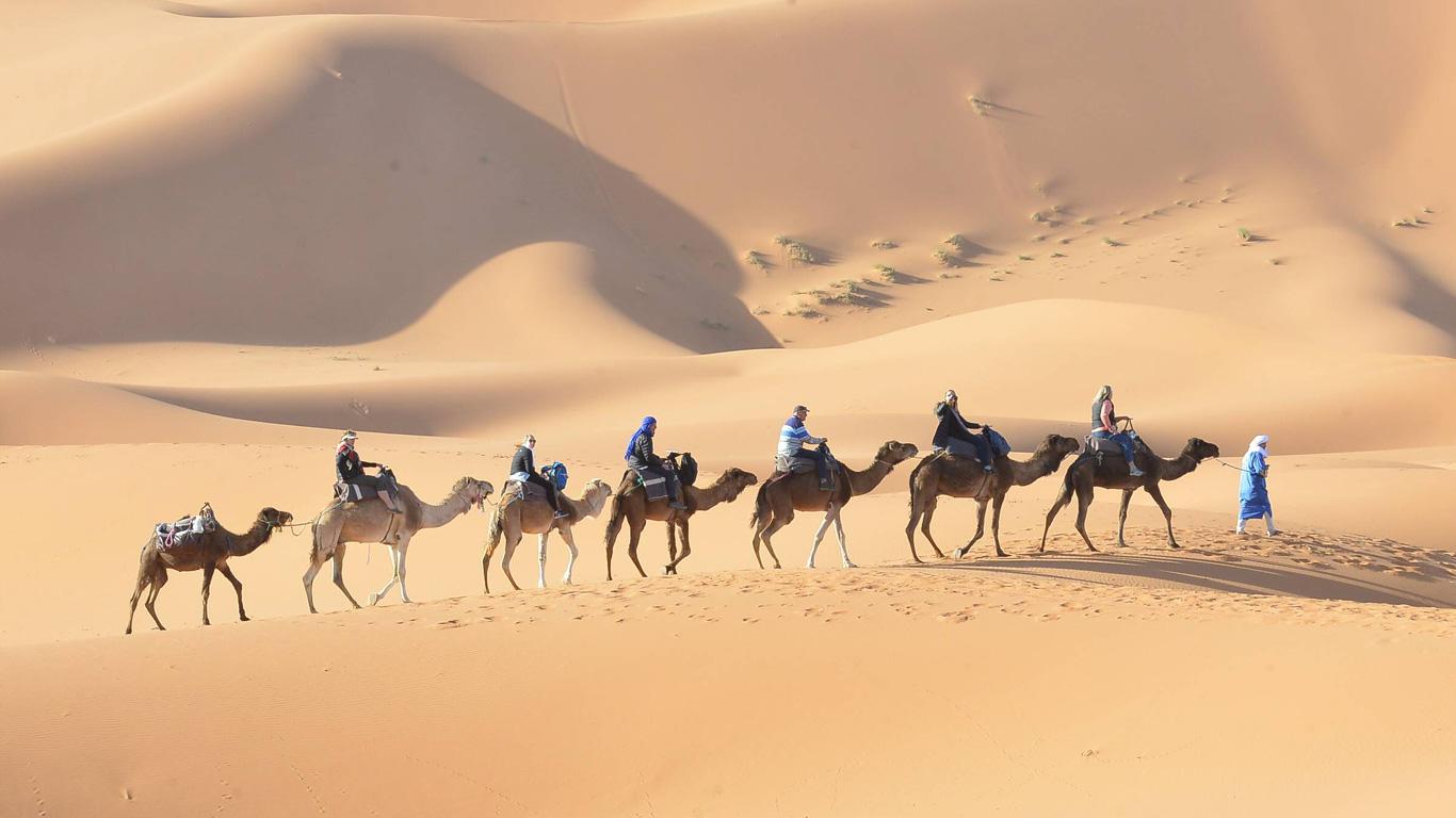 Schauen Sie sich die Wüsten in unserer Galerie an!