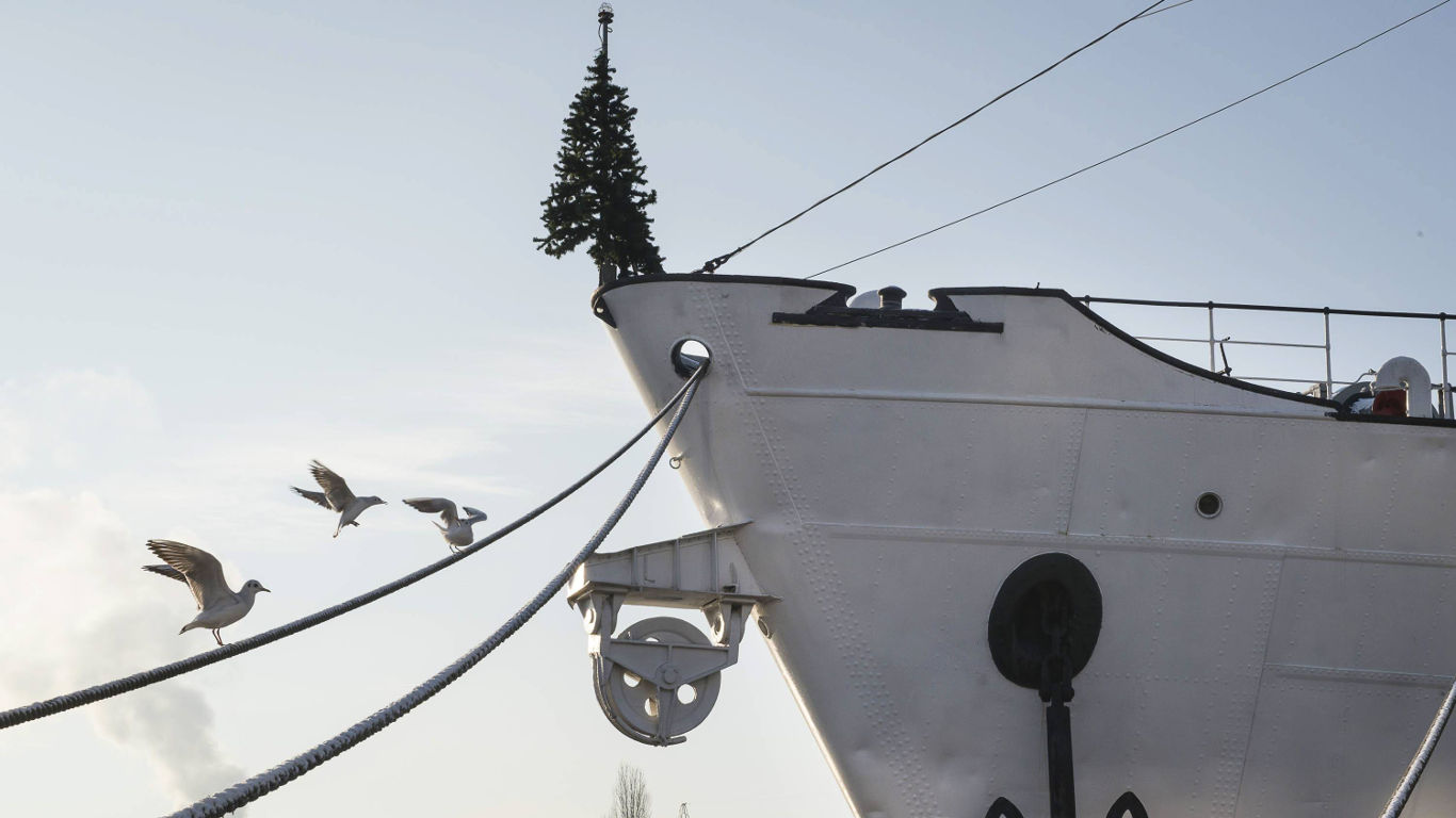 Weihnachtsbaum über Bord