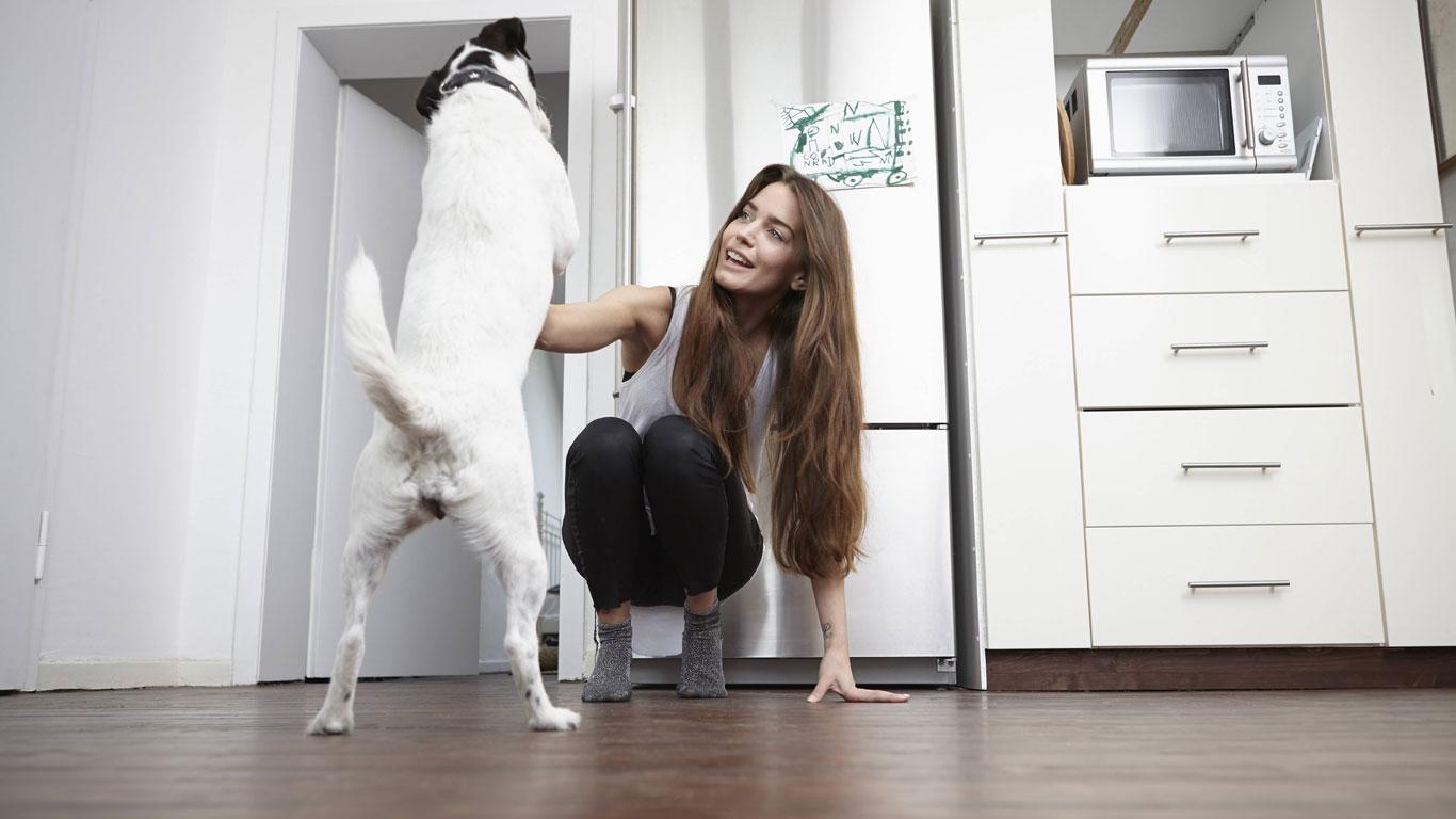 Freuen sich Hunde immer, wenn sie mit dem Schwanz wedeln?