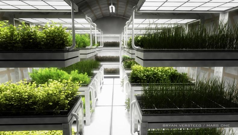 Gemüseanbau auf dem Mars