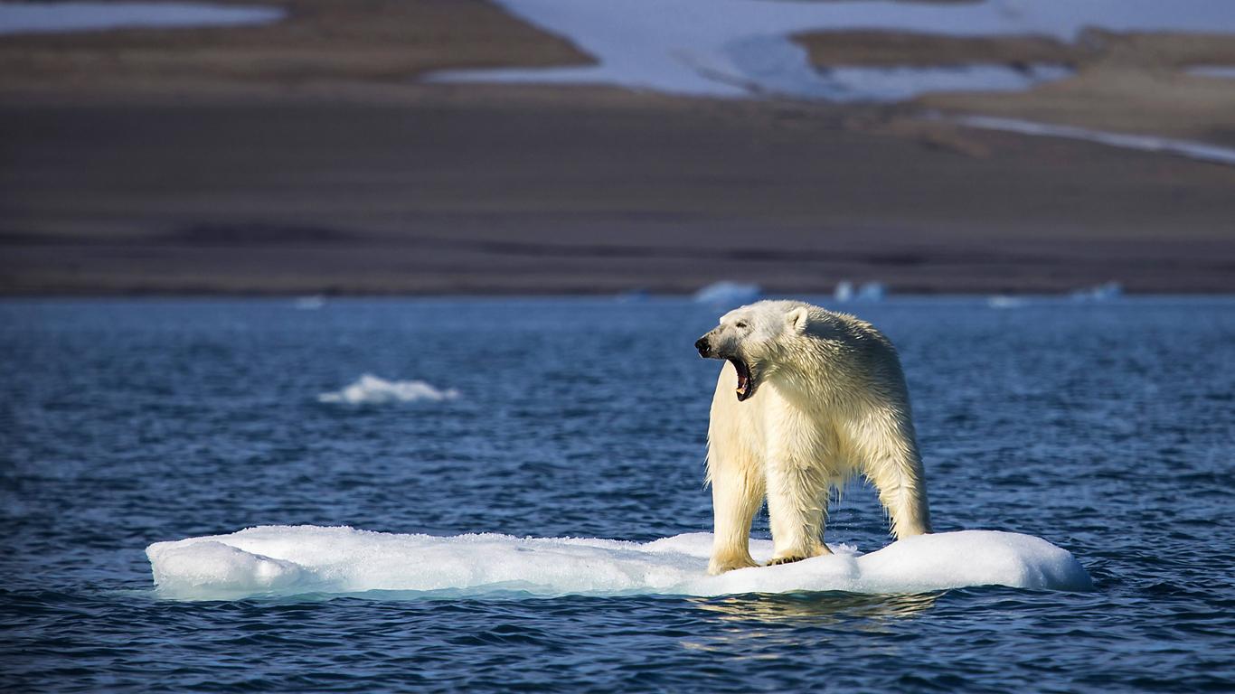 Die globale Erderwärmung
