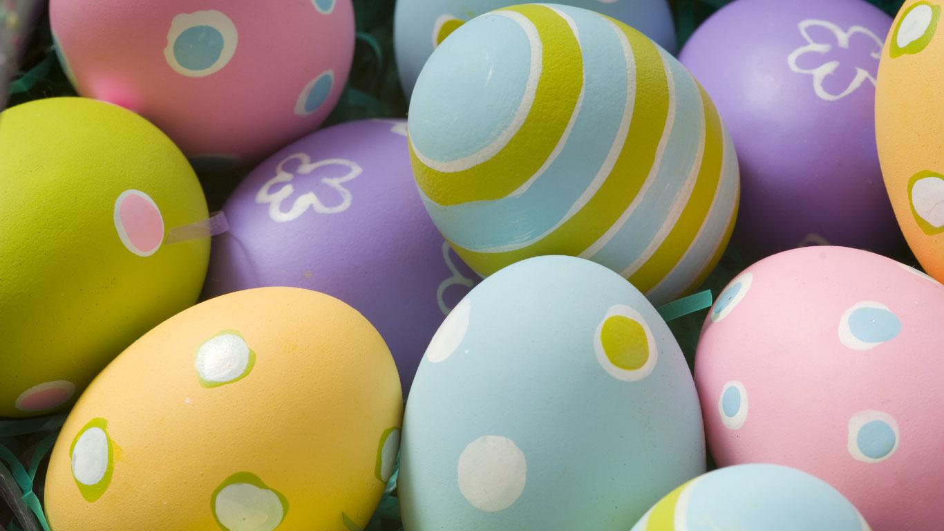 Eier im Visier
