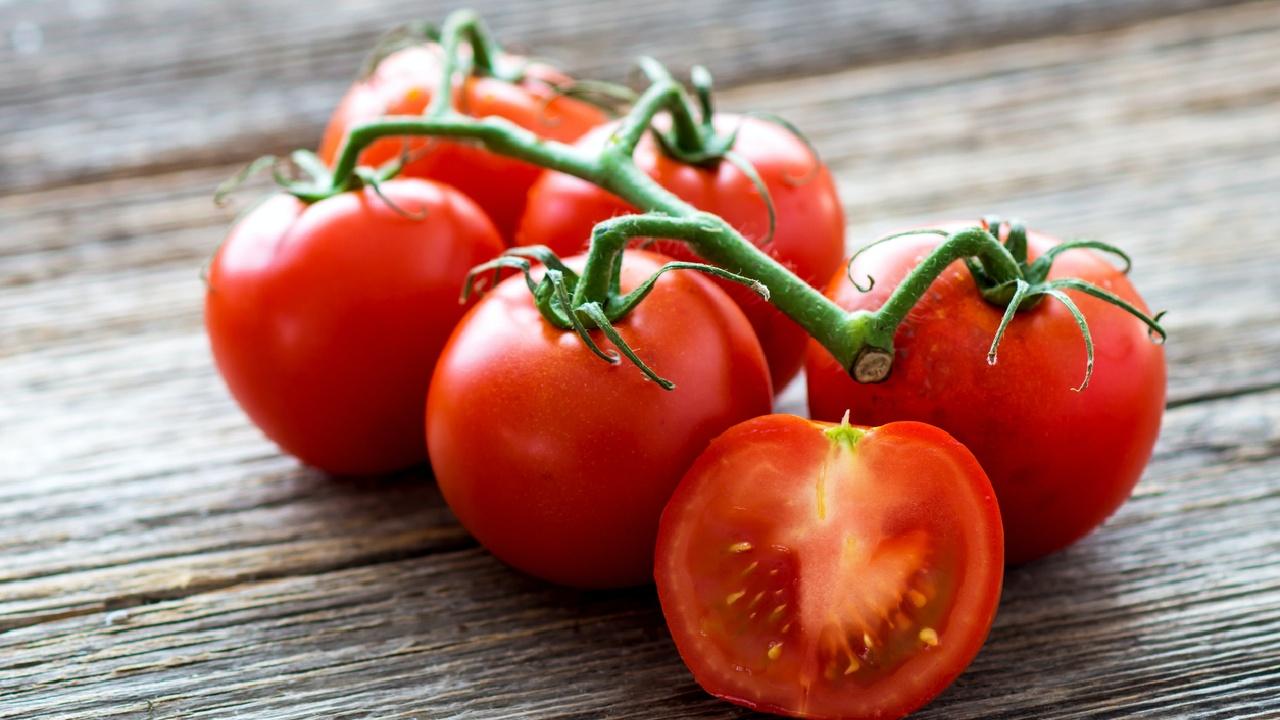 Der Tomatenstrunk ist giftig