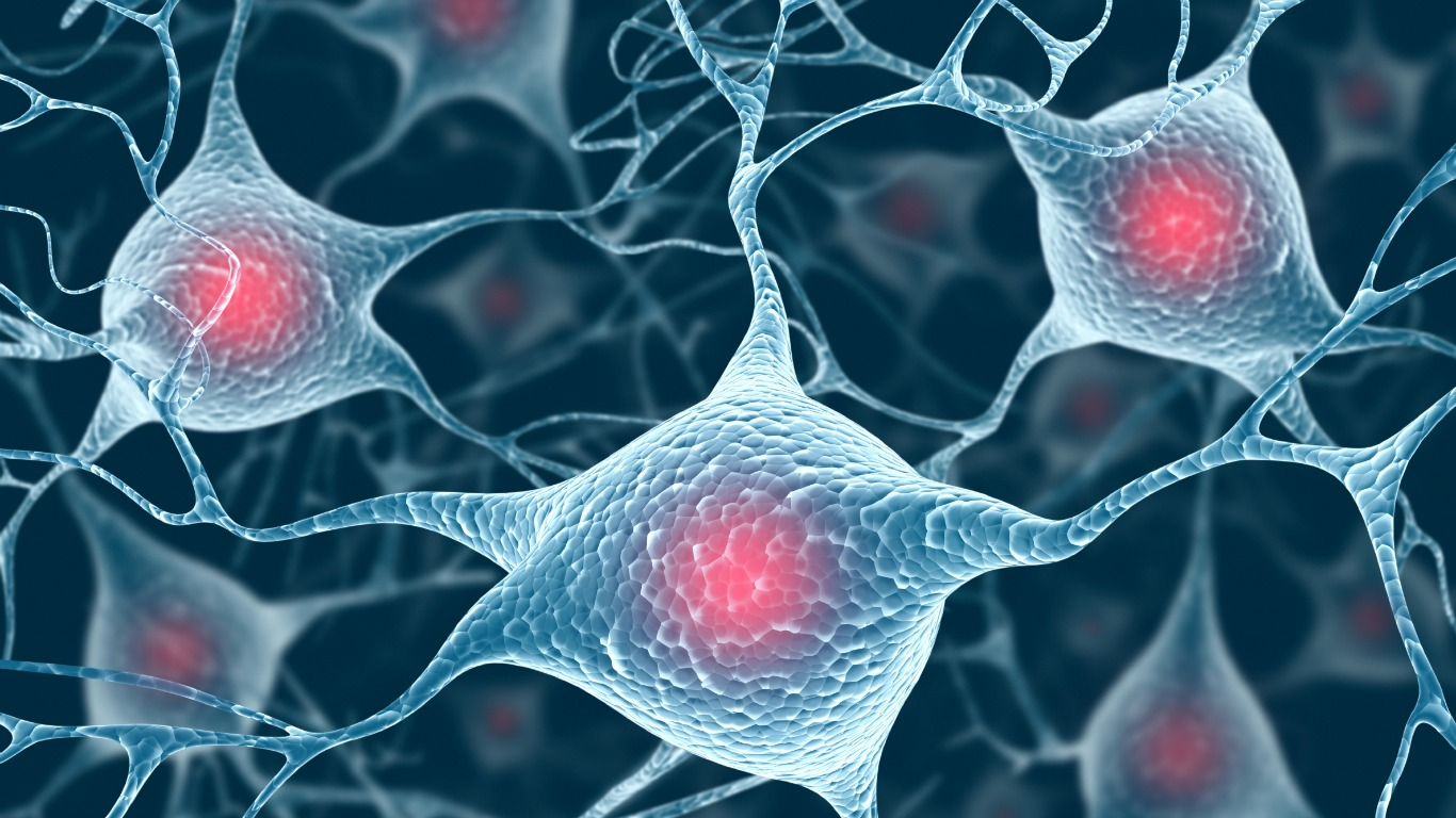 Gehirnzellen Absterben