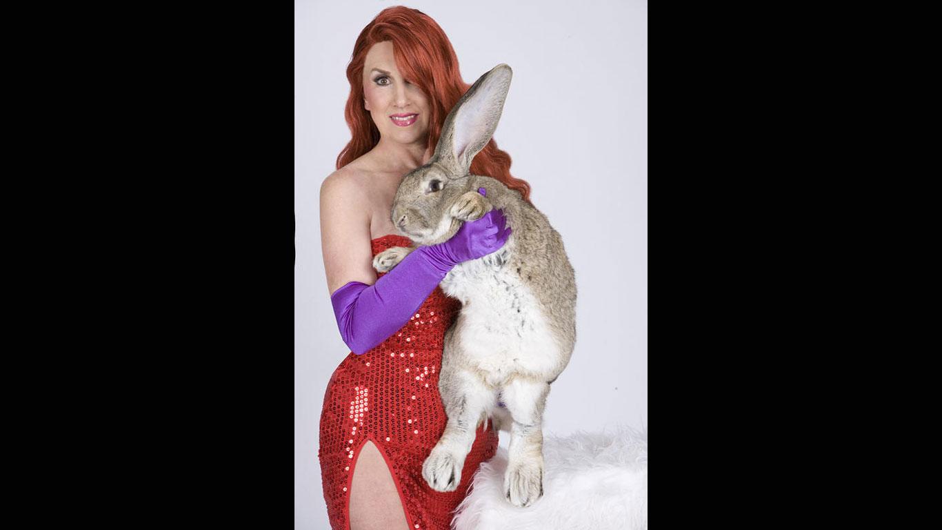 Längstes Kaninchen