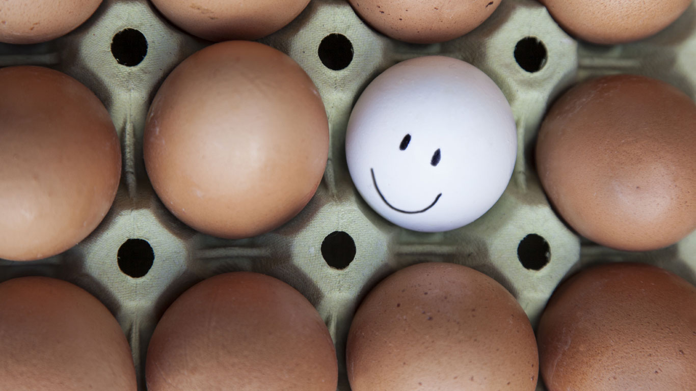 Eier erhöhen den Cholesterinspiegel im Blut?