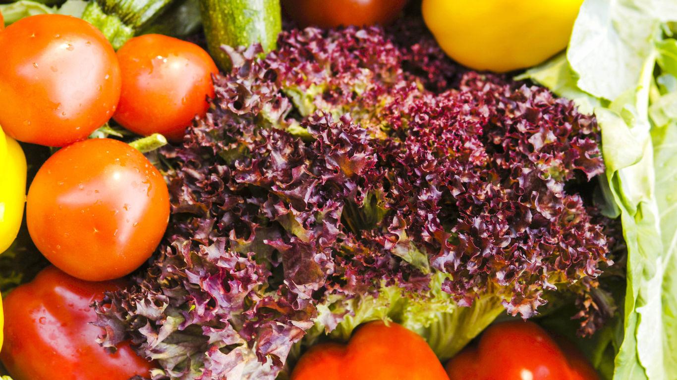 Wie funktioniert der Pestizid-Trick?