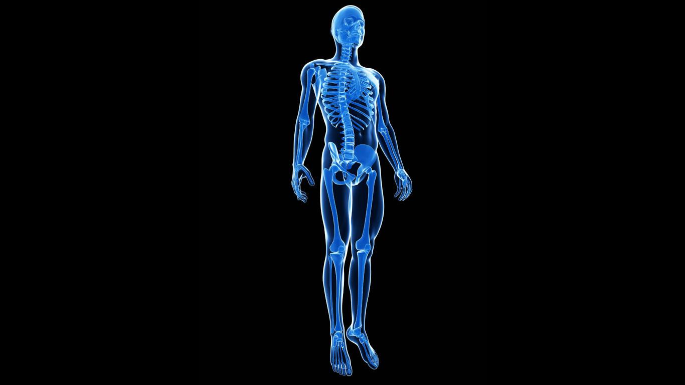 Auswirkungen auf den Körper