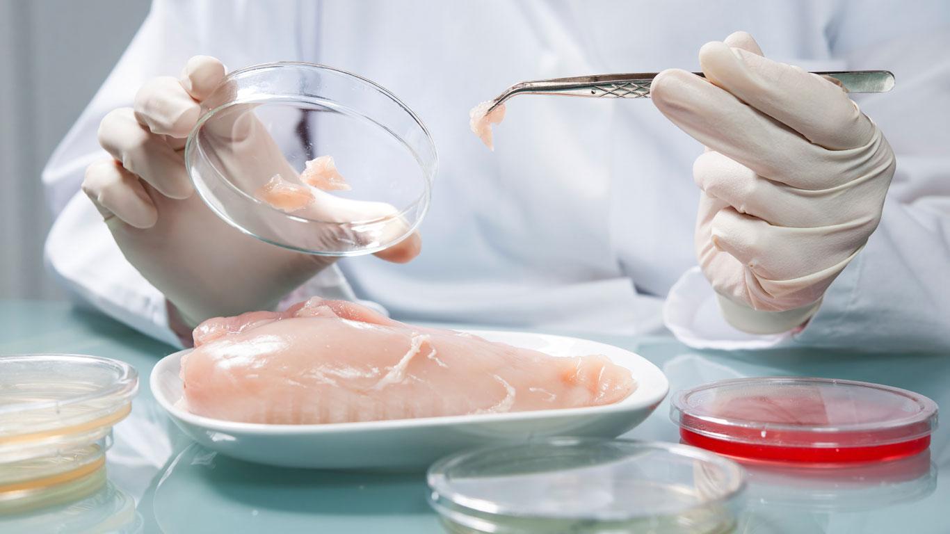 Dioxin-Fleisch