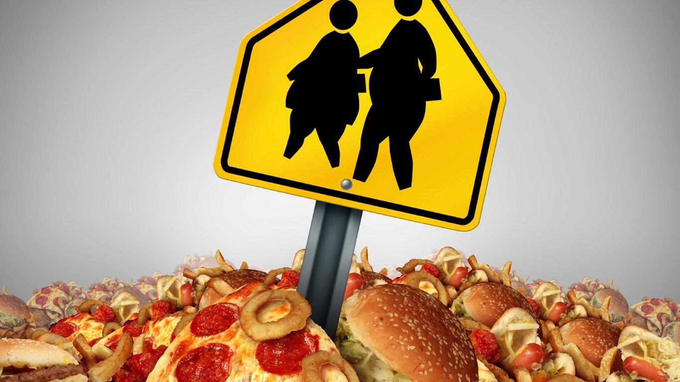Wissen über Fette