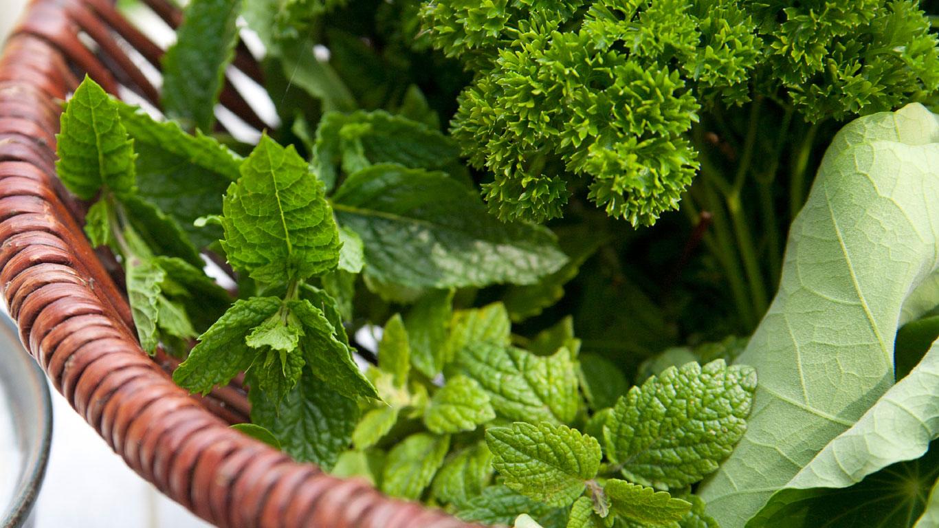 Gemüse, Obst und Kräuter für mehr Pep im Bergwasser