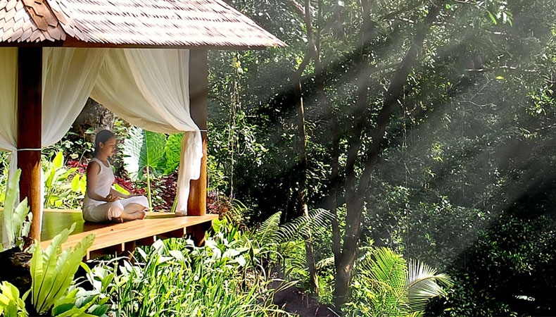 Die Sinne betören – Maya Ubud Resort & Spa
