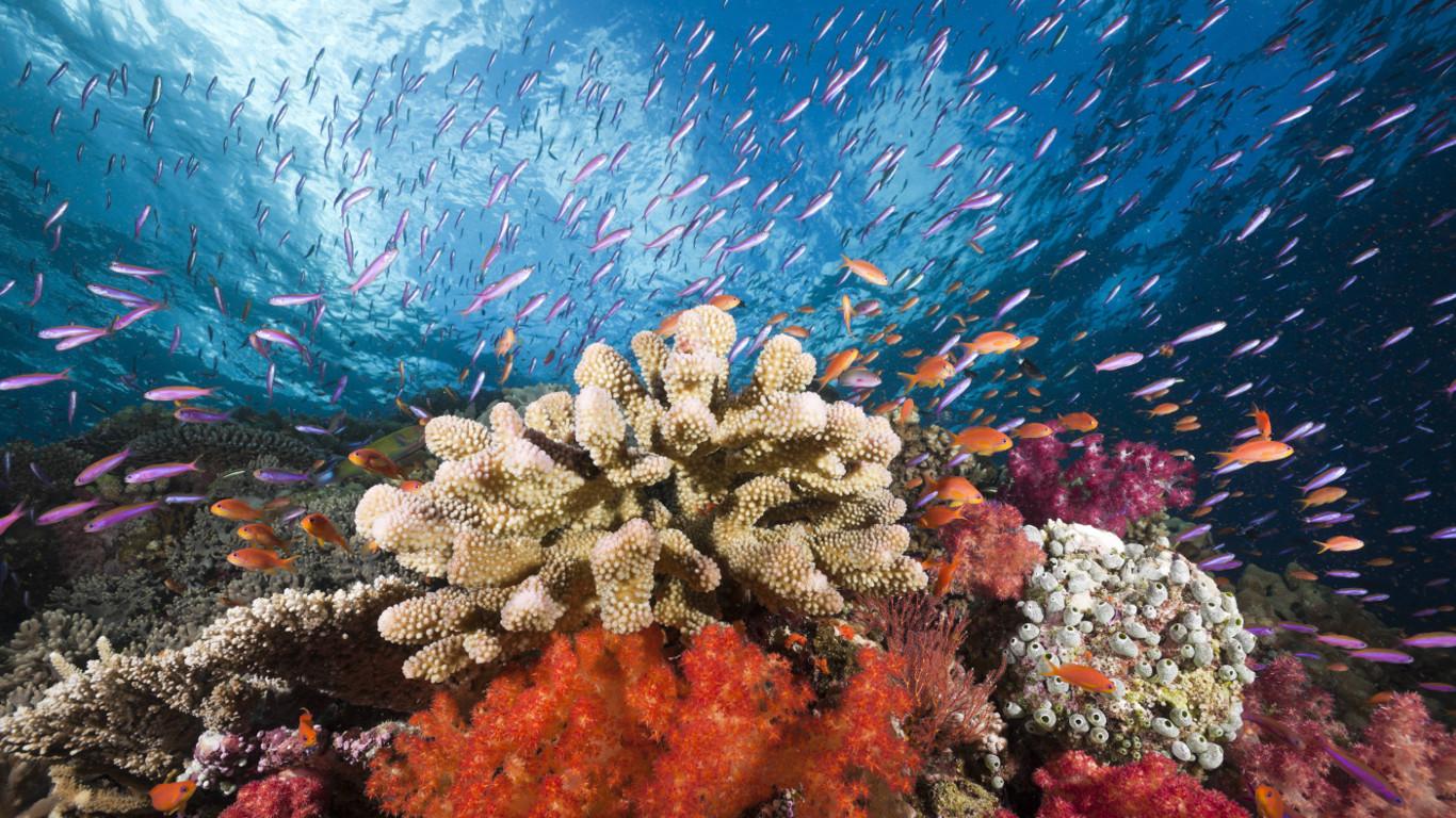 Riesiger, abgrundtiefer Pazifik