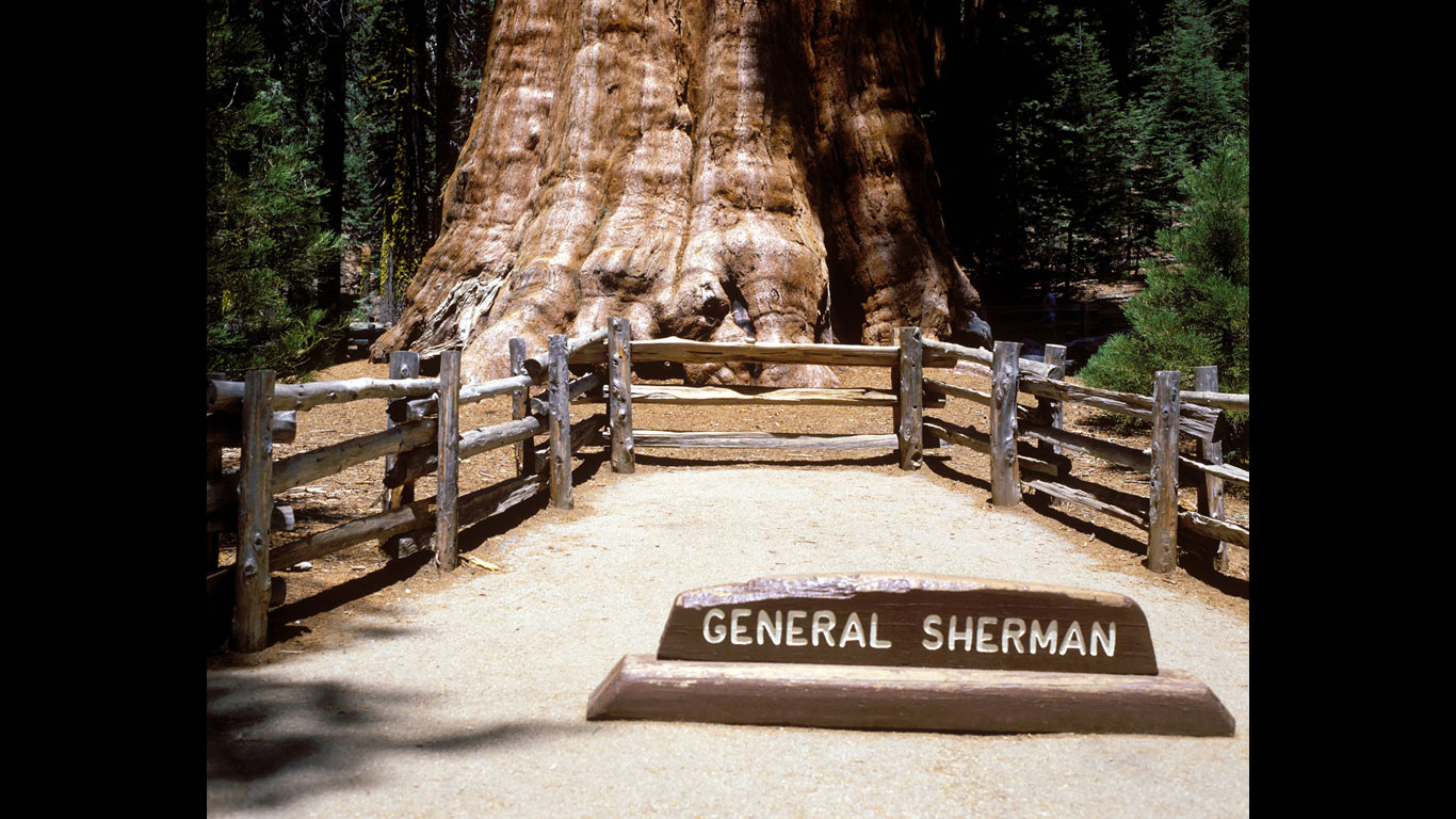 "Der ""General Sherman"""
