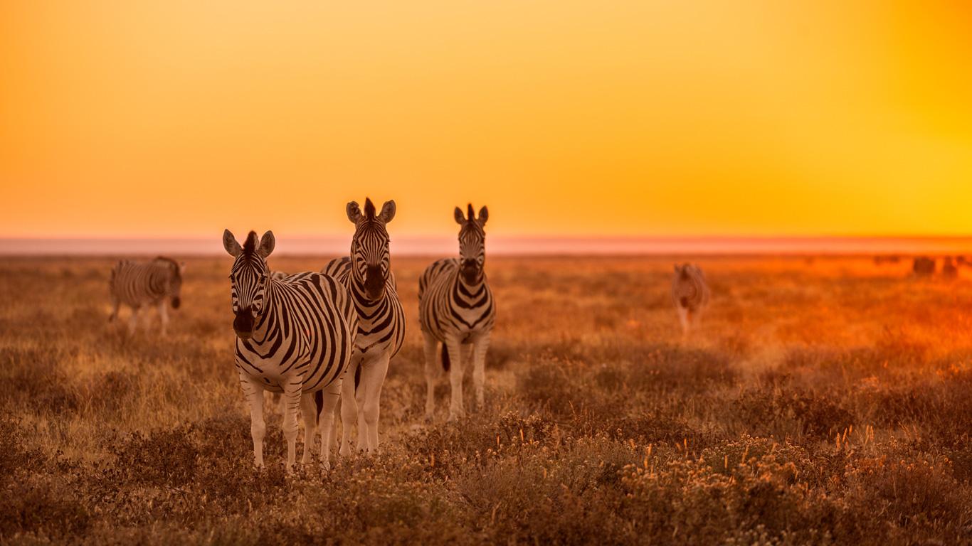 Namibia – die alte deutsche Kolonie