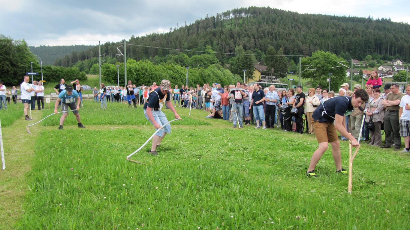Platz 8: Ländlicher Vierkampf in Baiersbronn