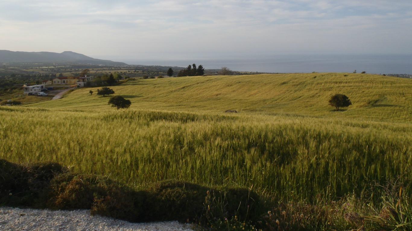 Zypern: Insel zwischen Orient und Okzident