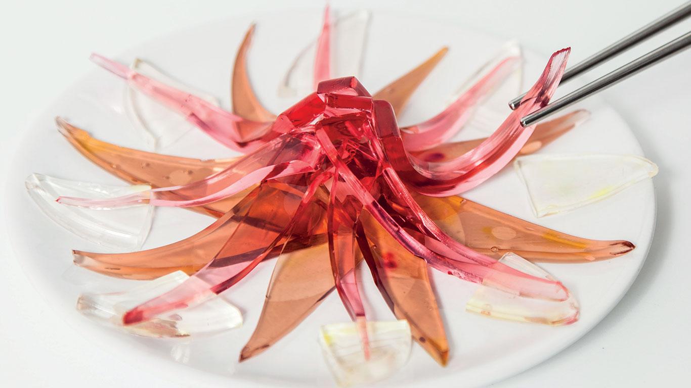 Künstliche Nahrung für Pescetarier: Laborfisch