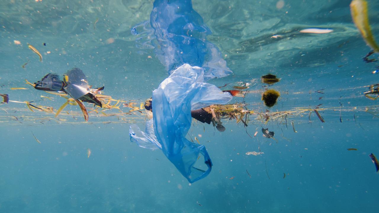 Wie entwickelt sich die Anzahl der Plastikteile im Meer?